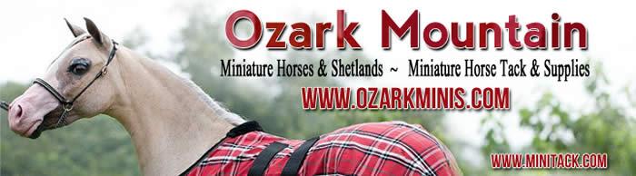 Pzark mountain mini tack