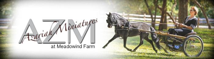 Meadowind Farm